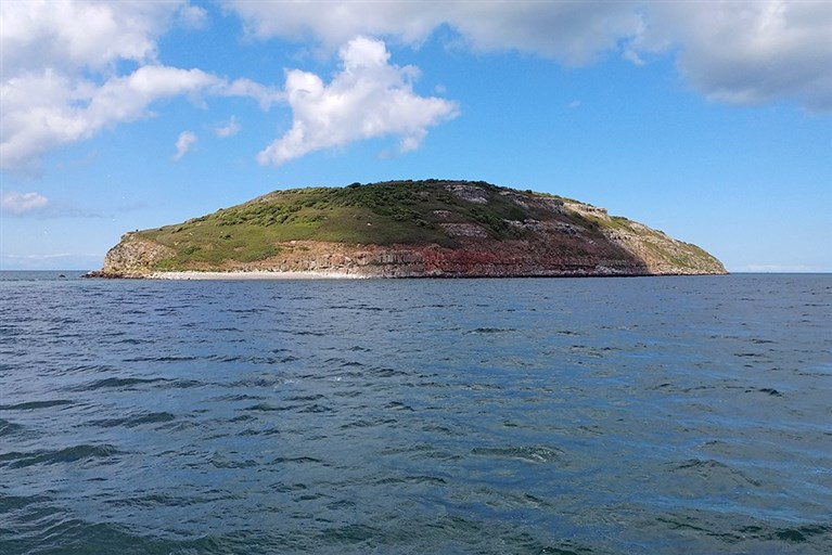 Puffin Island, a popular Anglesey boat cruise destination